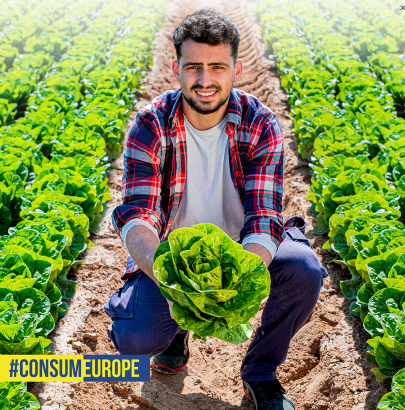 A man cultivating vegetables of europe