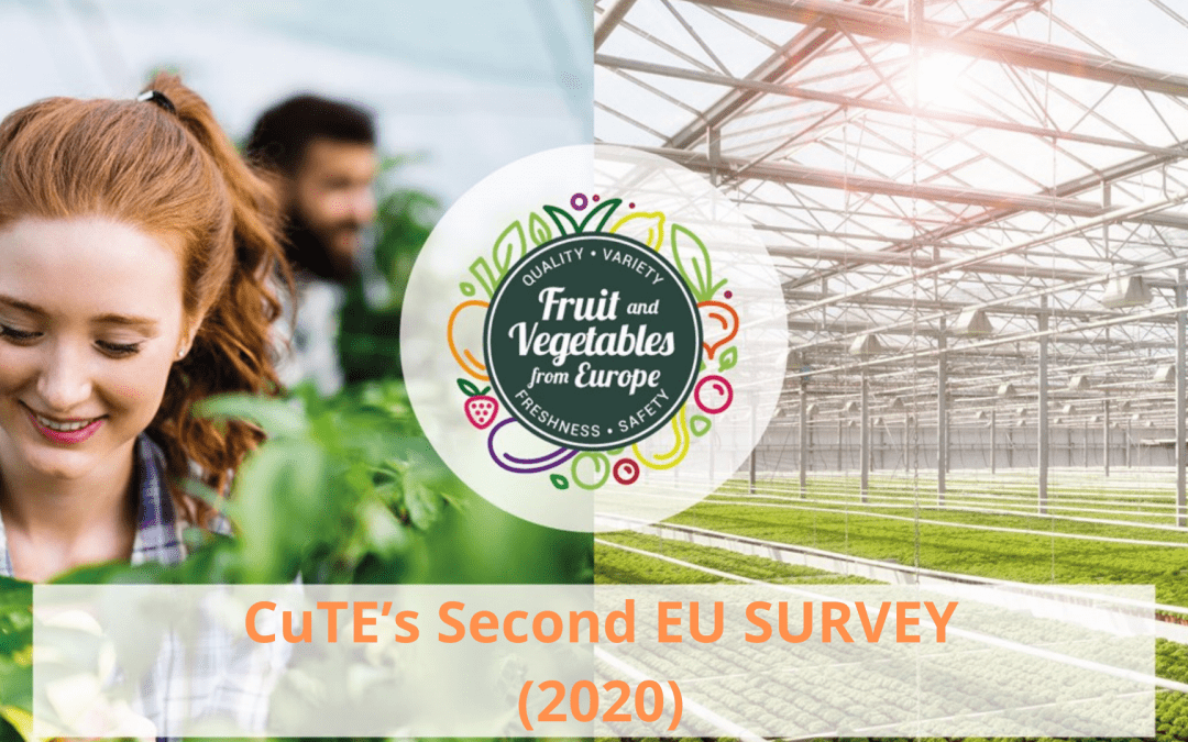 CuTE's 2nd EU Survey (2020): 76% of European consumers take into account the origin of fruit and vegetables when buying them.